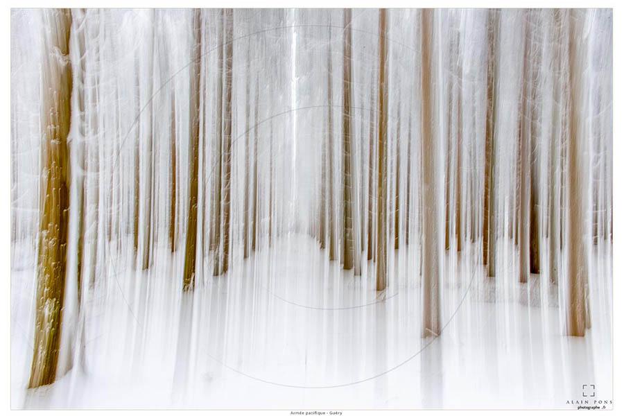 Alain_Pons_Photographe_nature_26
