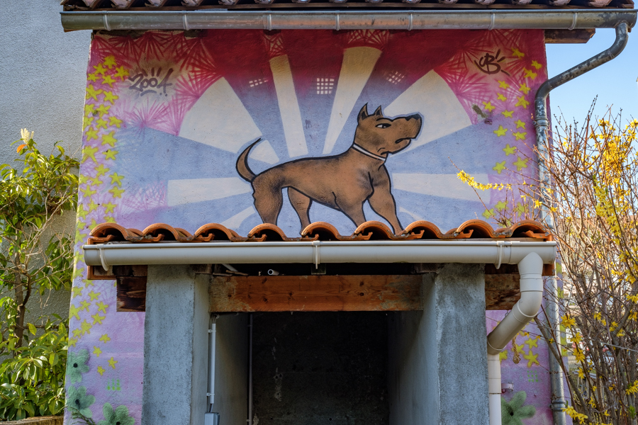 quelques tags ou dessins, ou graffitis ou peintures murales, ici un chien, libre à Clermont-Ferrand en France en 2020 pendant la Covid-19