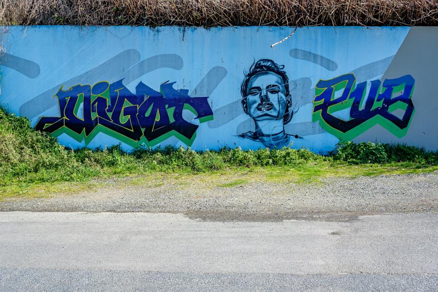 Une autre peinture murale au hasard de la sortie autorisée avec l'attestation officielle, les grands fous. A Clermont-Ferrand en 2020 en France - Covid-19
