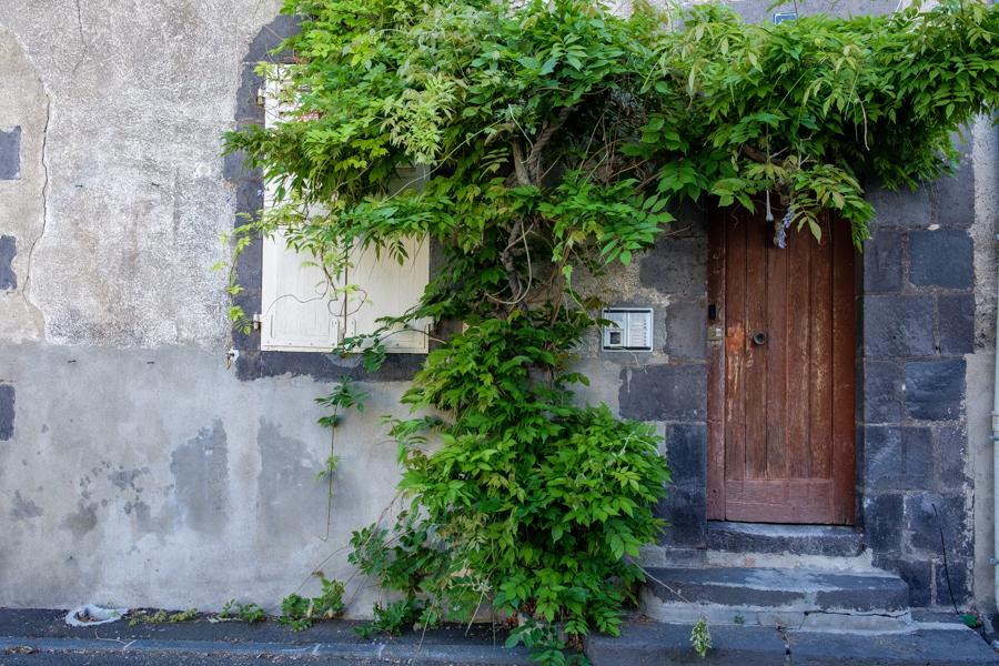 Cette entrée de maison avec les Glycines en fleurs, c'était le 18 avril 2020. Le 9 mai 2020 fin de partie pour les fleurs mais pas que, le virus lui aussi s'en est allé, faire un tour et perdre de sa virulence. A Clermont-Ferrand en France en 2020. Covid-19
