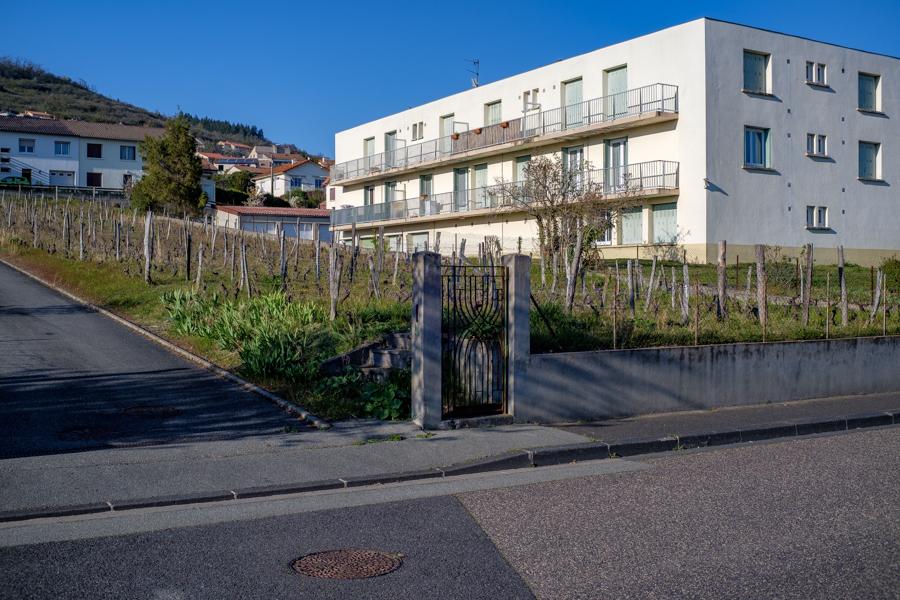 La vigne en ville de Clermont-Ferrand, espaces libres, 2020